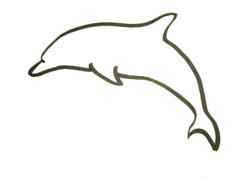 800x599 Dolphin Outline Drawing Drawing Dolphins Outline Dolphin Fish