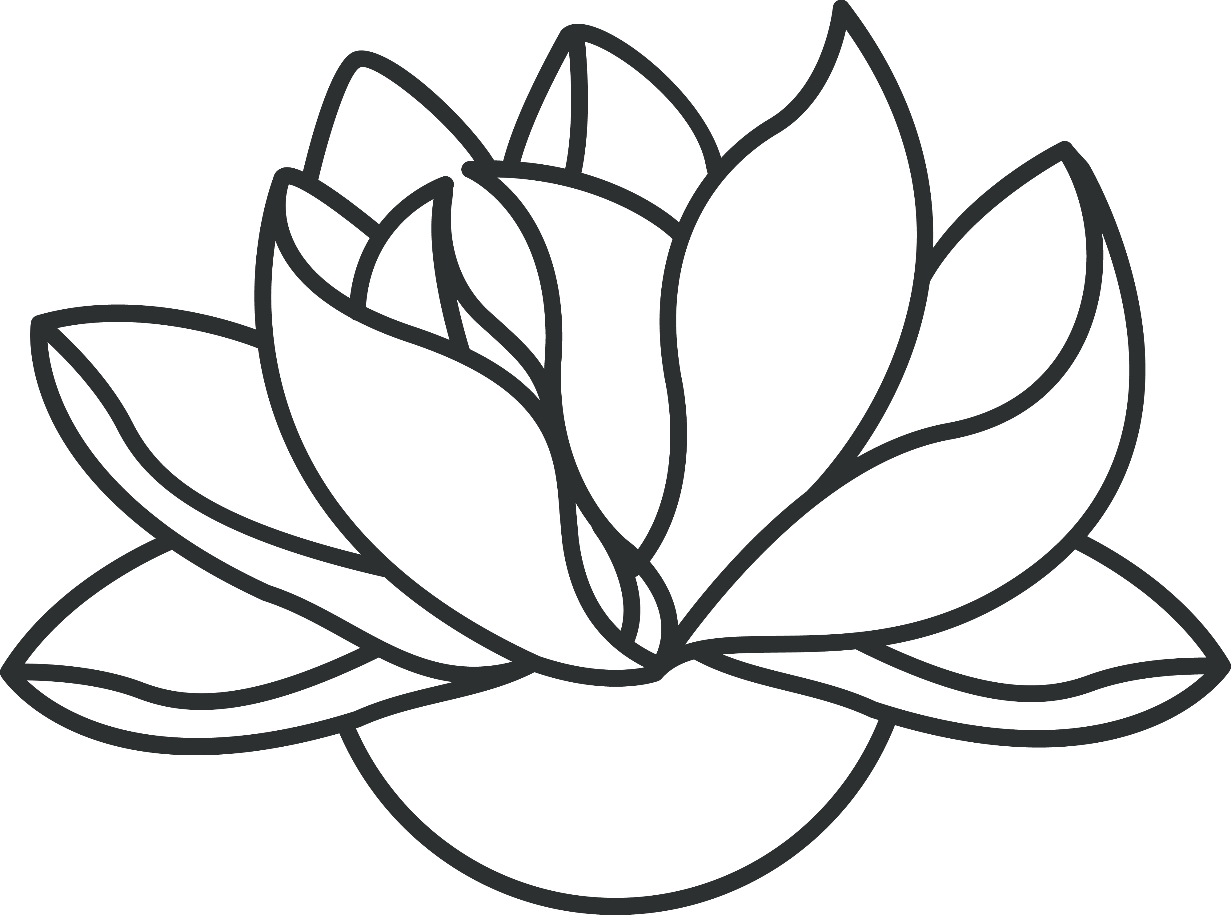 4000x2973 Outline Drawing Lotus Flower For Free Download