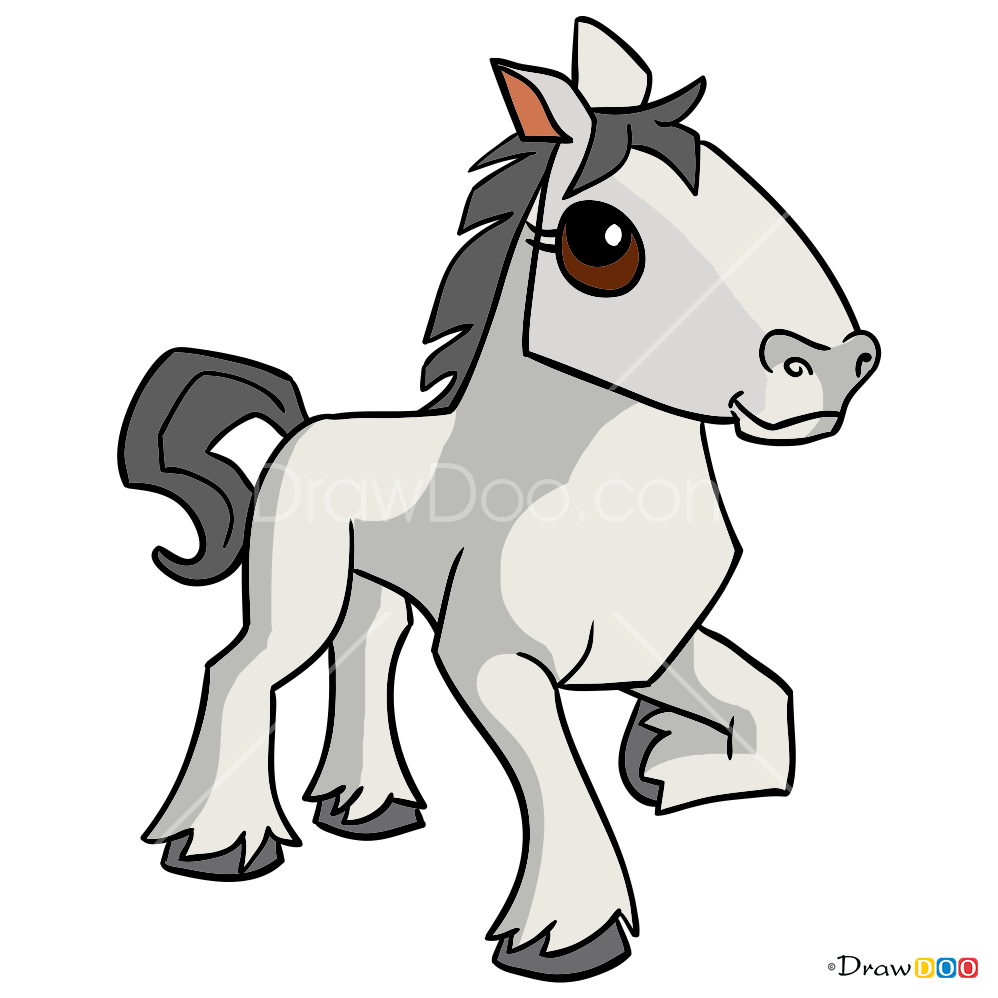 998x998 How To Draw Horse, Animal Jam