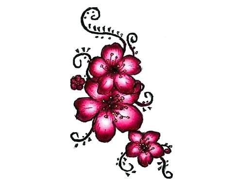 515x385 Drawings Of Japanese Cherry Blossoms Cherry Blossom Tattoo Draw