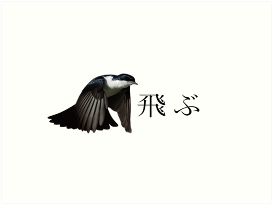 Japanese Bird Drawing