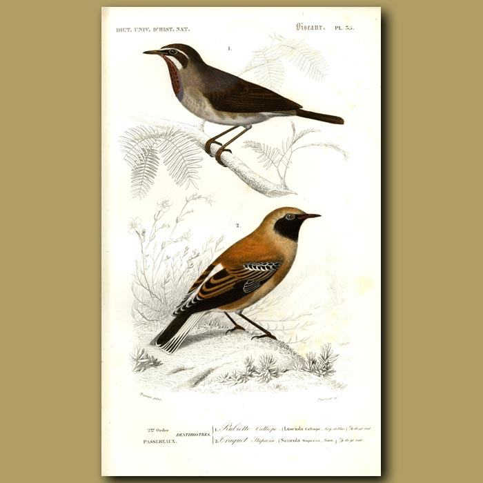 700x700 Japanese Nogoma And Wheat Ear Birds Genuine Antique Print For Sale