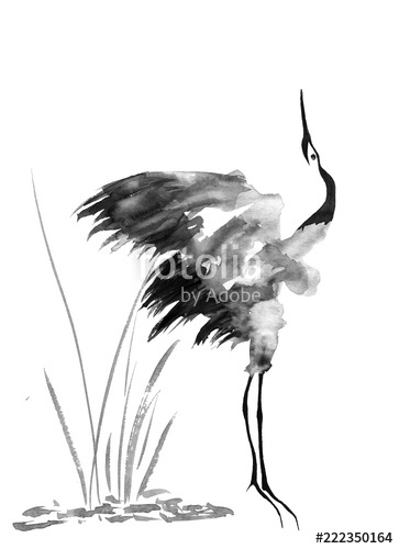 363x500 Japanese Crane Bird Drawing Watercolor And Ink Illustration