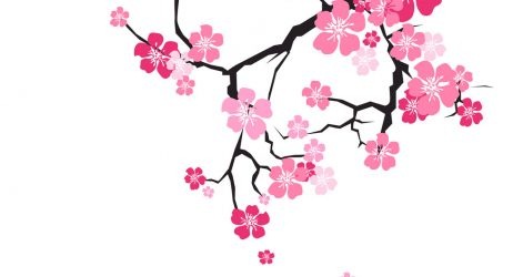 471x250 Chicano Girl Drawings Tags Chicago Drawing Cherry Blossom Tree