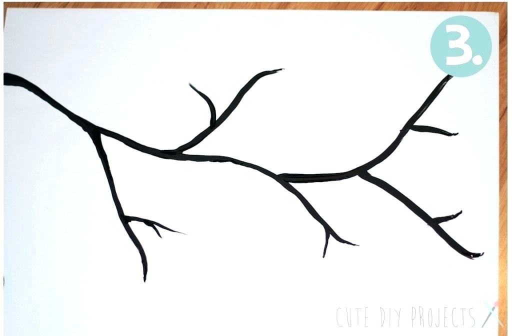 1024x672 Draw A Cherry How To Draw A Cherry Blossom Step Draw Cherry