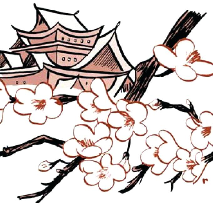 680x680 Japanese Cherry Blossom Drawings Phone Wallpapers