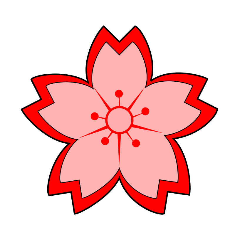 800x800 Japanese Cherry Blossom Clipart Collection