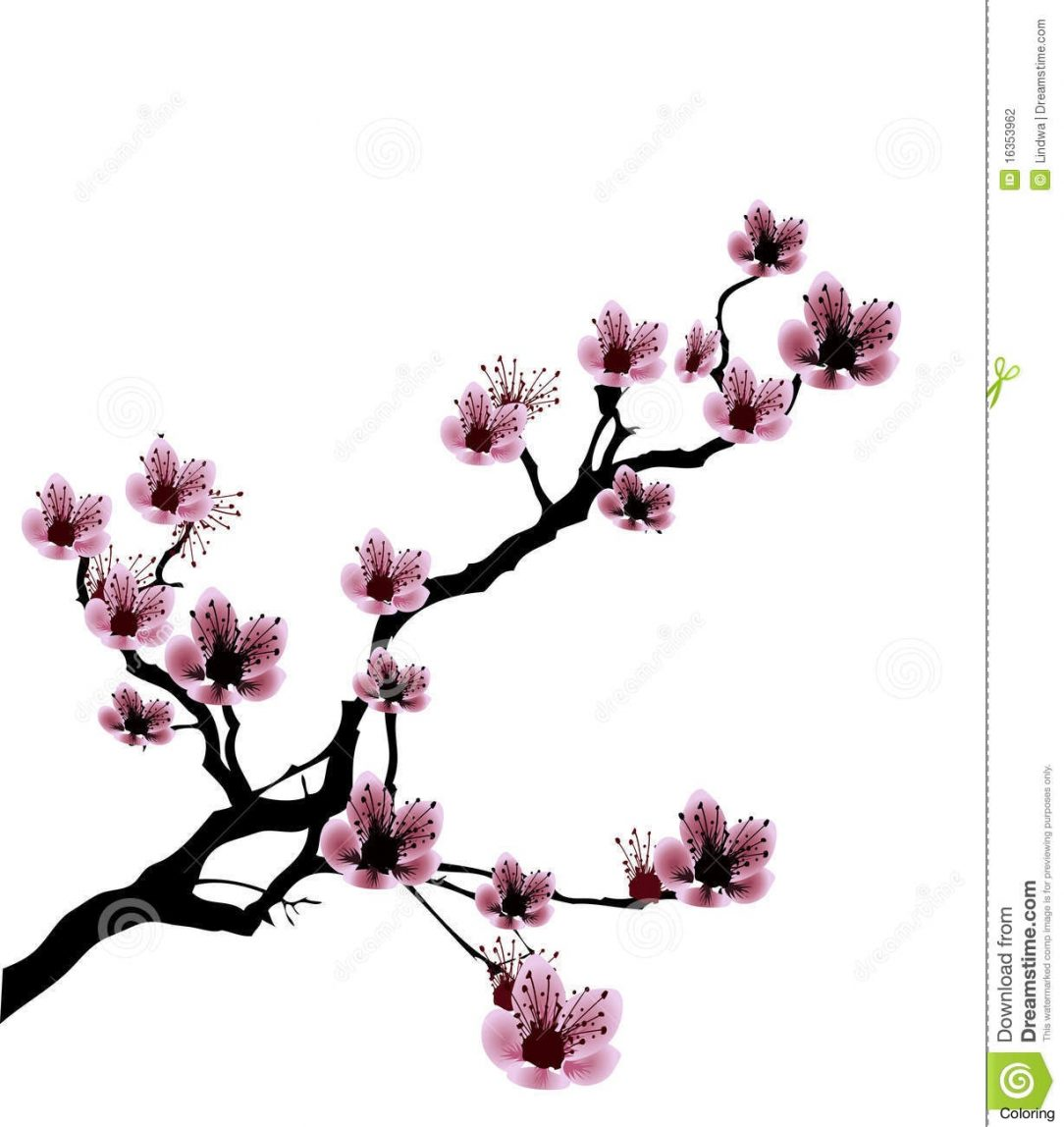 1084x1148 Cherry Blossom Charcoal Drawing Japanese Step Tree