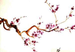 300x210 Best Rhcom Afficher Luimage Duorigine Japon X Le Pays De