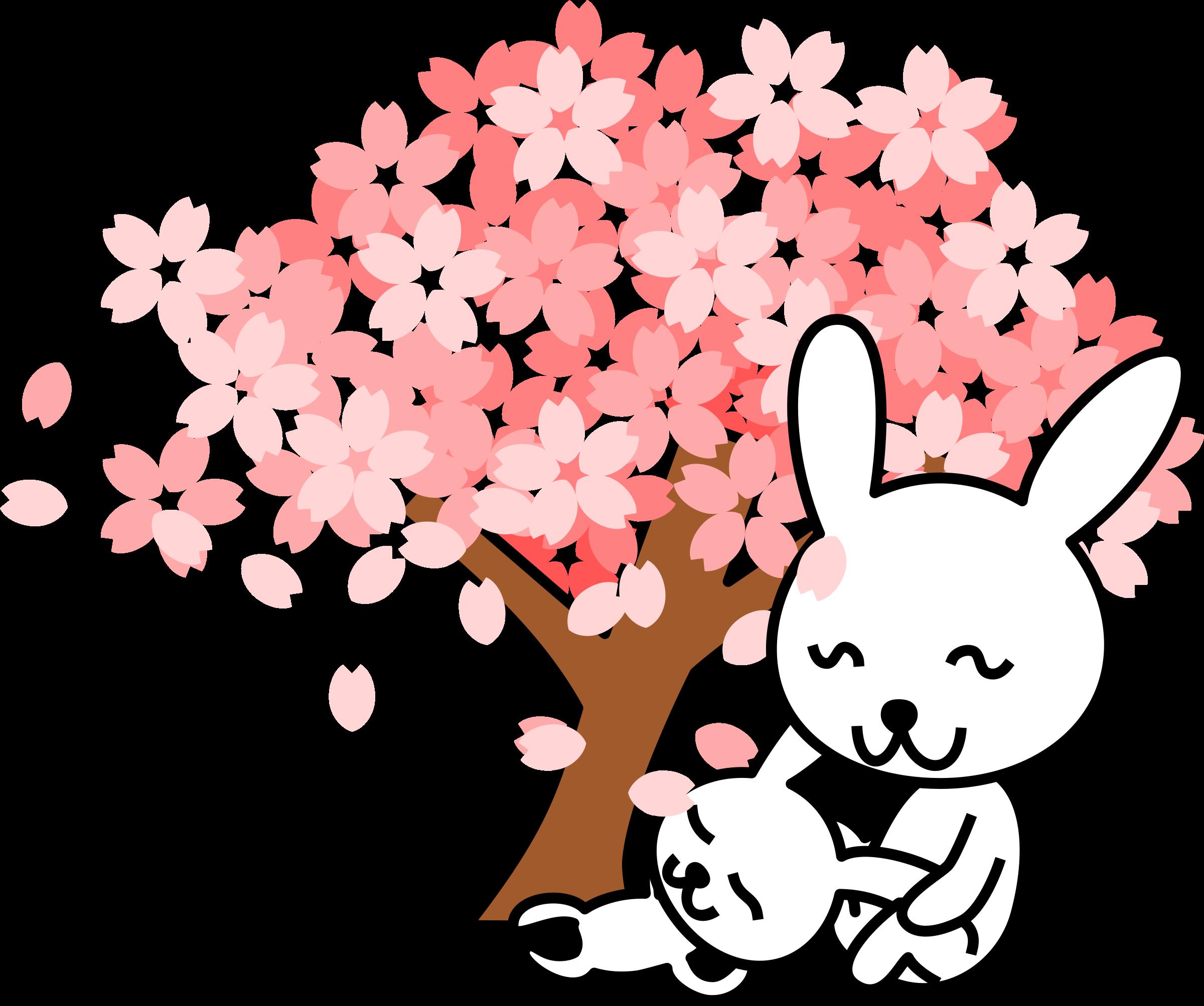 Japanese Cherry Blossom Tree Drawing