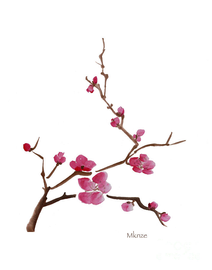 707x900 Huge Collection Of 'cherry Branch Drawing' Download More Than