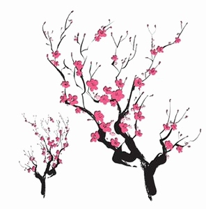 296x300 Japanese Cherry Blossom Sketch Awesome Free Cherry Blossoms