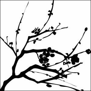 300x300 Japanese Cherry Tree Silhouette