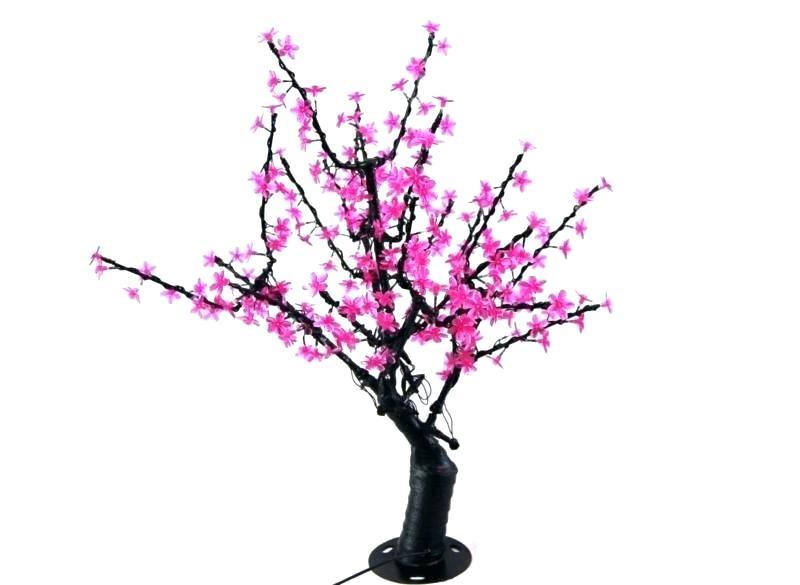 800x585 Blossom Tree Drawing