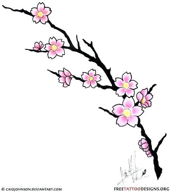 574x644 Cherry Blossom Branch