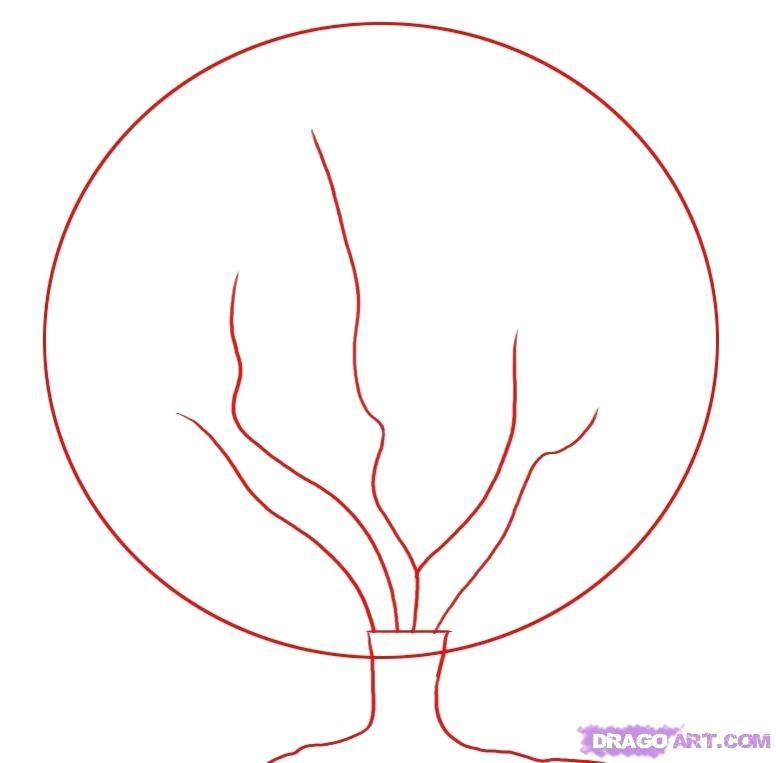 776x763 cherry tree drawing cherry blossom tree cherry blossom tree