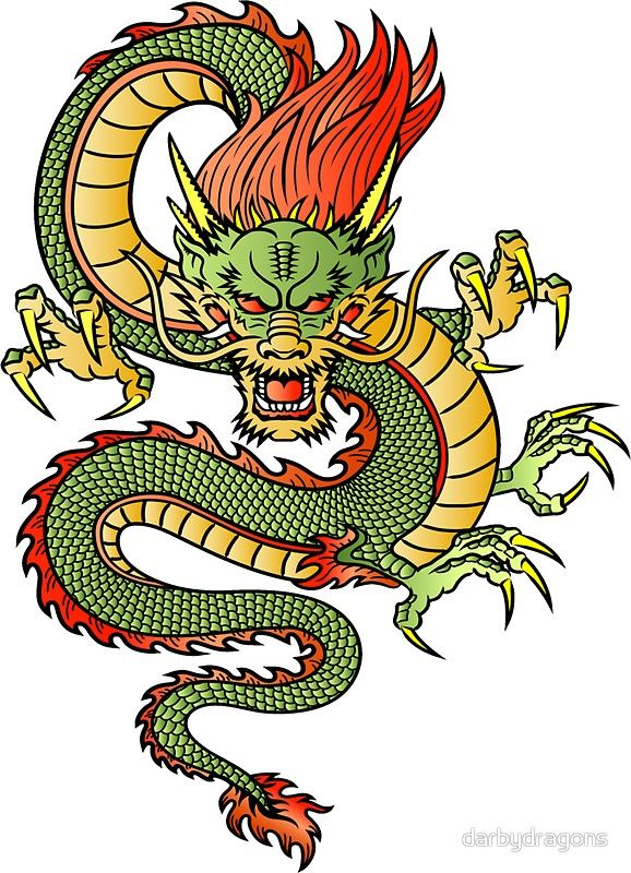 578x800 front facing dragon dragon tatoo dragon tattoo
