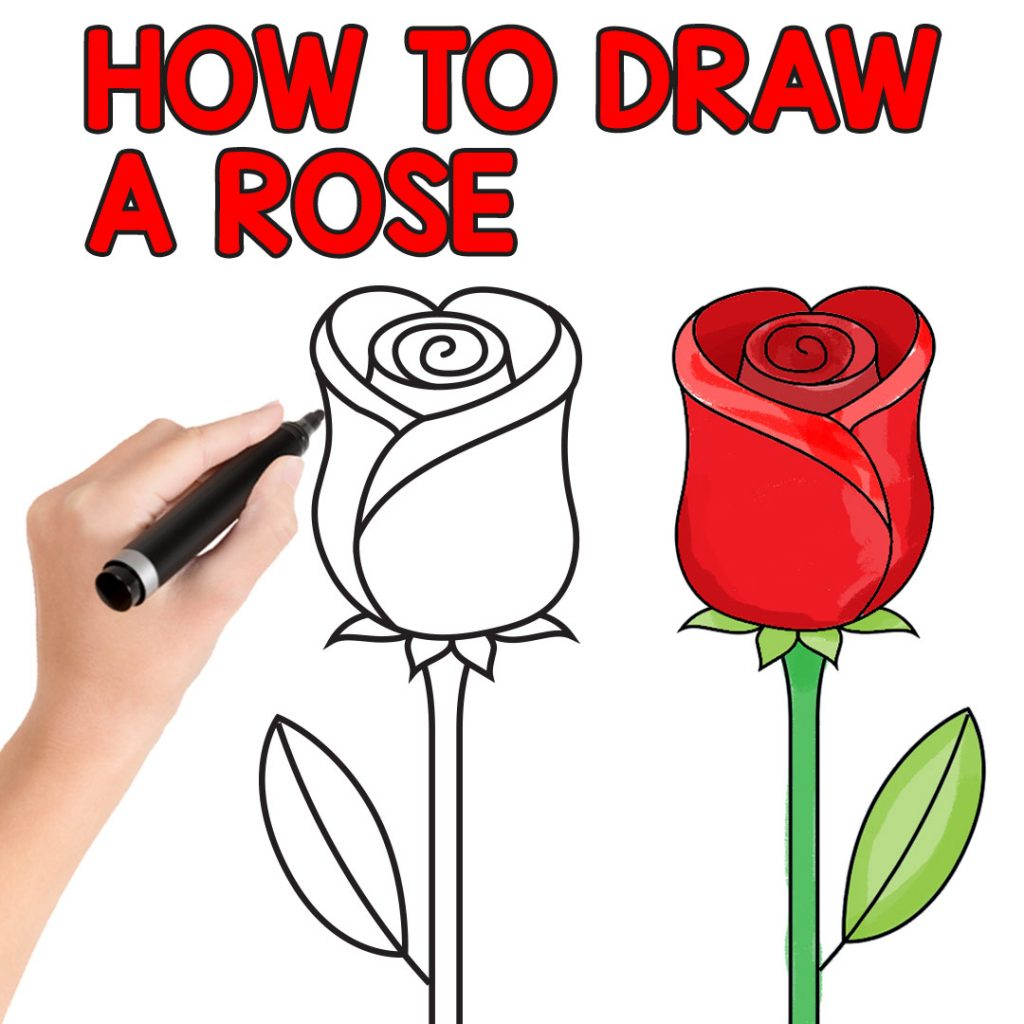 1024x1024 How To Draw A Rose