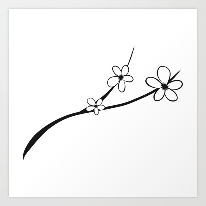 700x700 Huge Collection Of 'japanese Cherry Blossom Drawing Black