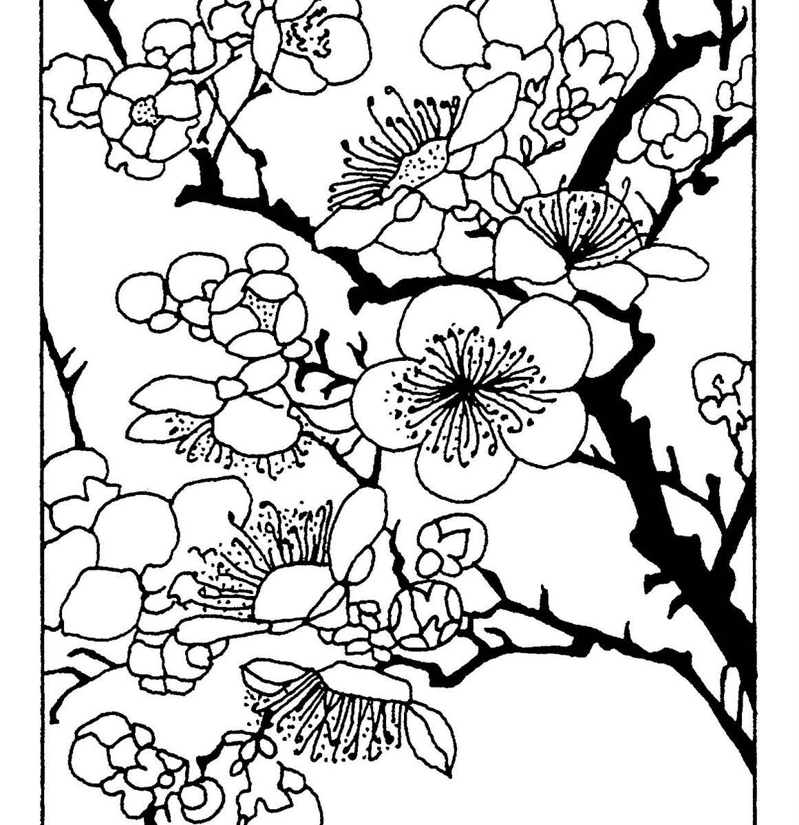 1161x1200 Japanese Cherry Blossomring Pages Flower Pageuring Tree