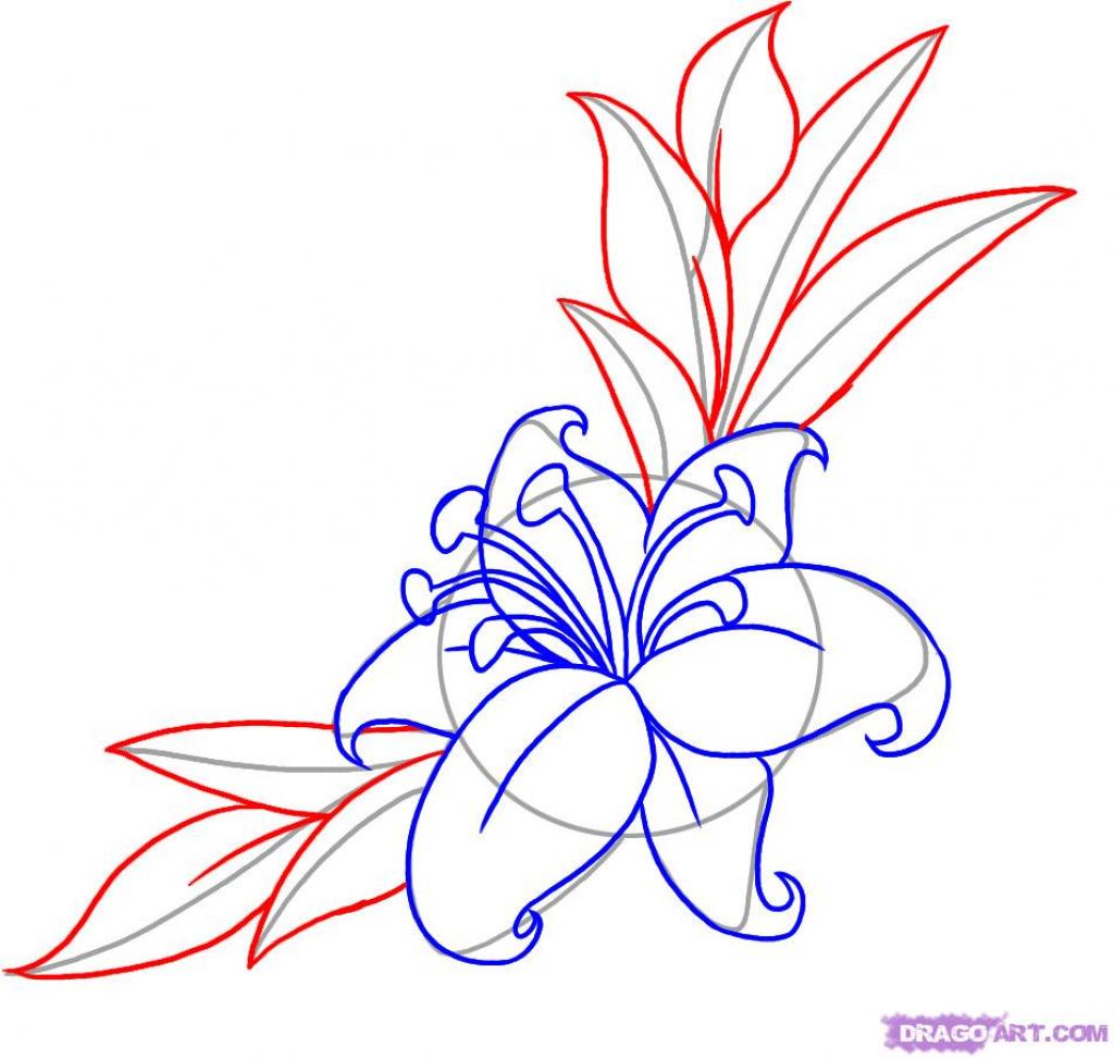 1024x973 Japanese Flower Drawing Tutorial Drawings Of Japanese Flowers