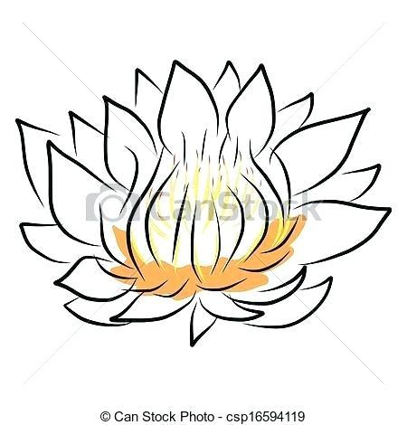450x470 Lotus Drawing