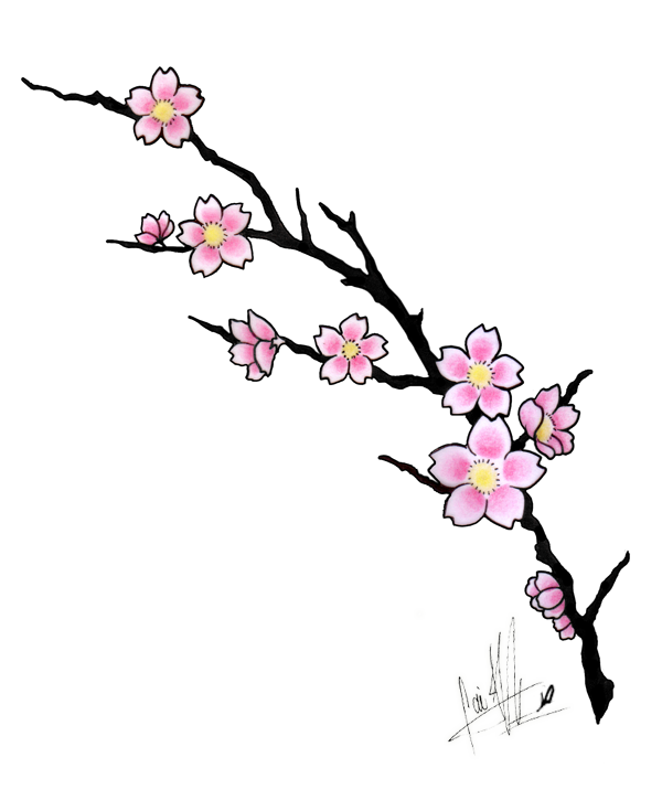 600x735 Drawn Cherry Blossom Japanese Drawing Pencil And In Color Drawn