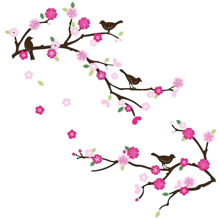 736x736 Drawings Of Japanese Cherry Blossoms Cherry Blossom Tattoo Draw