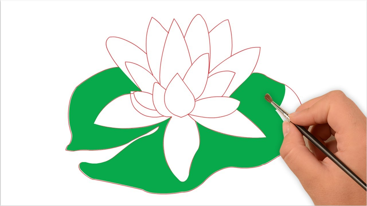 1280x720 How To Draw Water Lily For Kids Easy Step