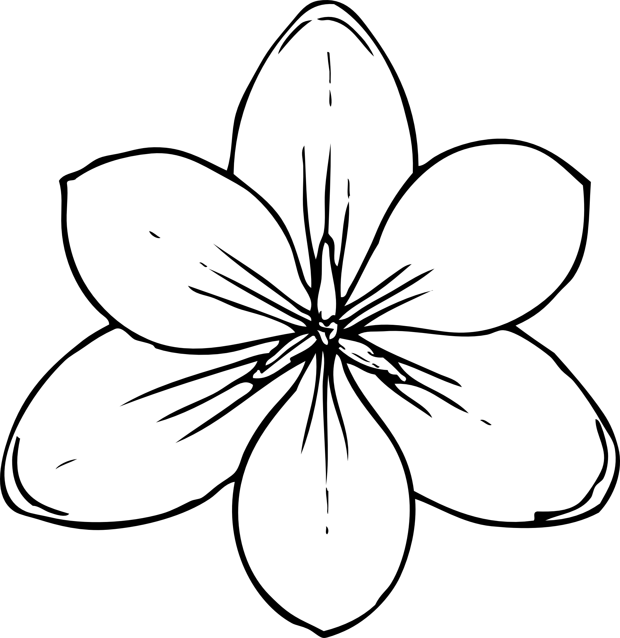 1969x2029 Lotus Flower Line Drawing Pictures And Cliparts, Download Free