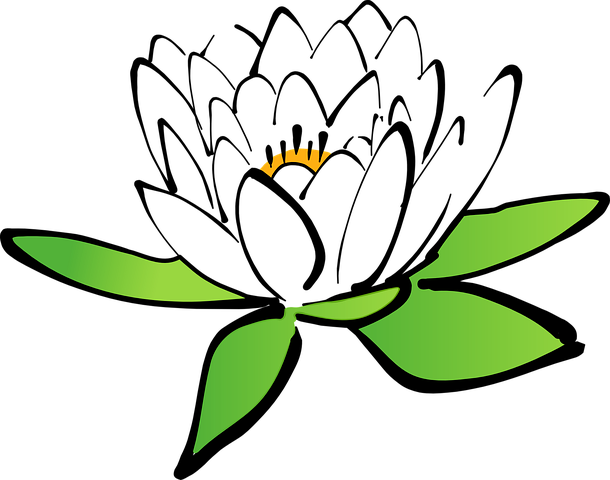 610x480 Collection Of Free Minimalist Drawing Lotus Flower Download On Ui Ex