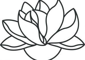 300x210 Lotus Flower Drawings Free Japanese Lotus Flower Outline Japanese