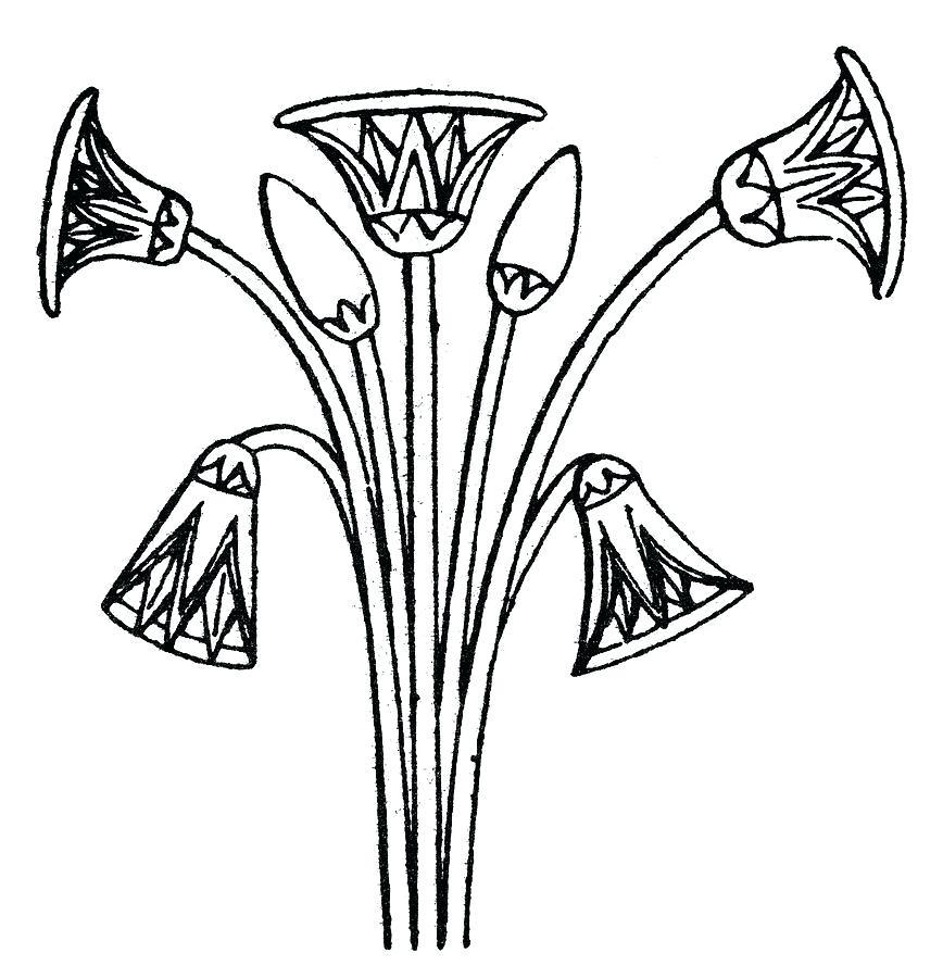 868x900 Lotus Drawing