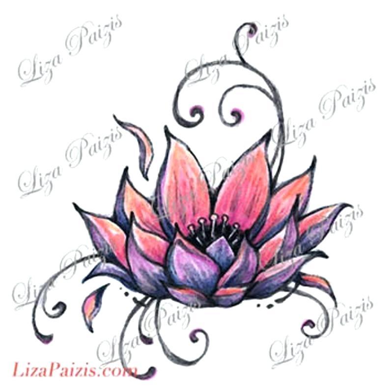 794x794 Lotus Drawing