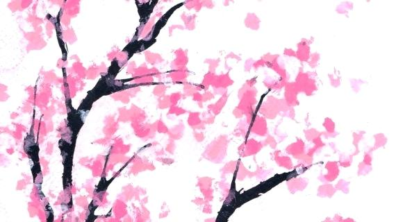 570x320 Cherry Tree Drawing Cherry Blossom Tree Drawing Best Images