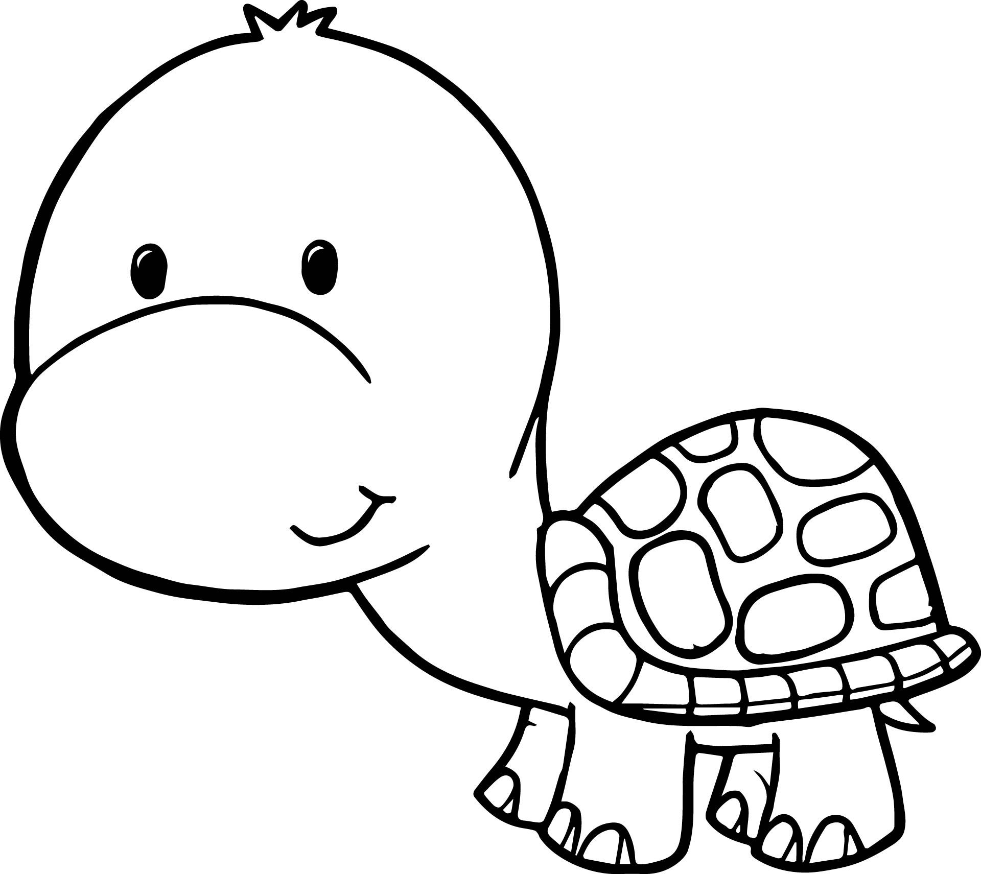 1920x1711 Cute Cartoon Turtle Wallpapers