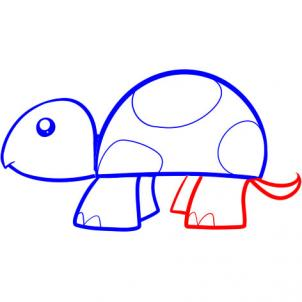 302x302 How To Draw A Turtle For Kids, Step
