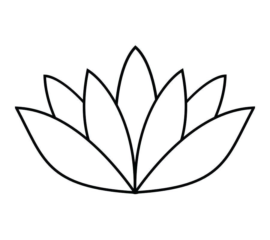 900x800 Flower Drawing Outline Jasmine Flower Outline Drawing Google