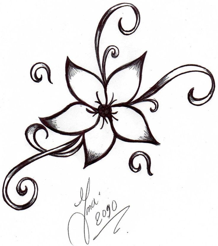 Jasmine Flower Drawing