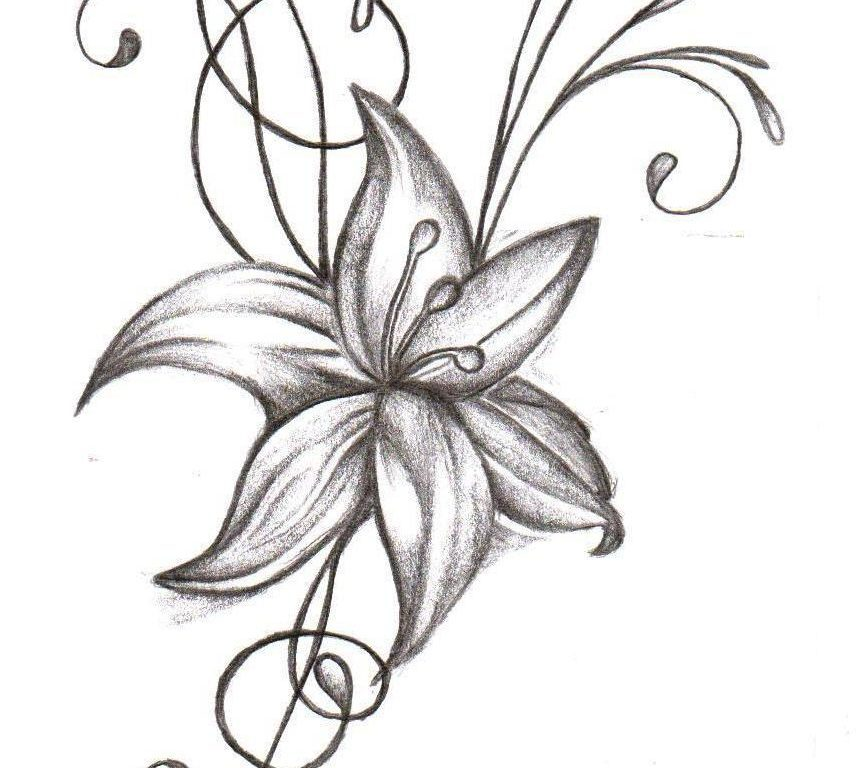 856x768 Jasmine Flower Tattoo Designs Best Flower Site