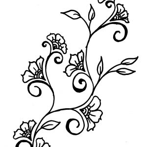 300x300 Simple Flower Drawing Save Botanics