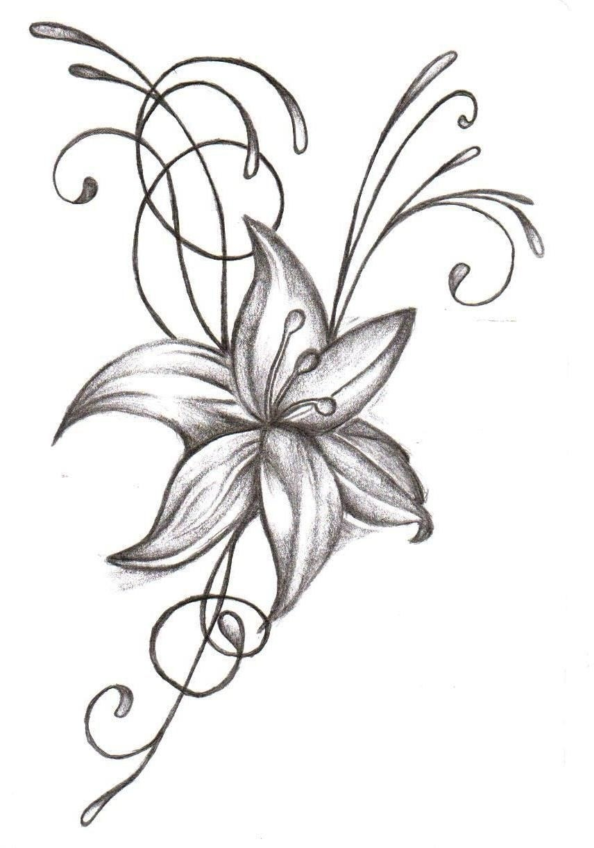 856x1221 Gladiolus Drawing August Birth Flower For Free Download