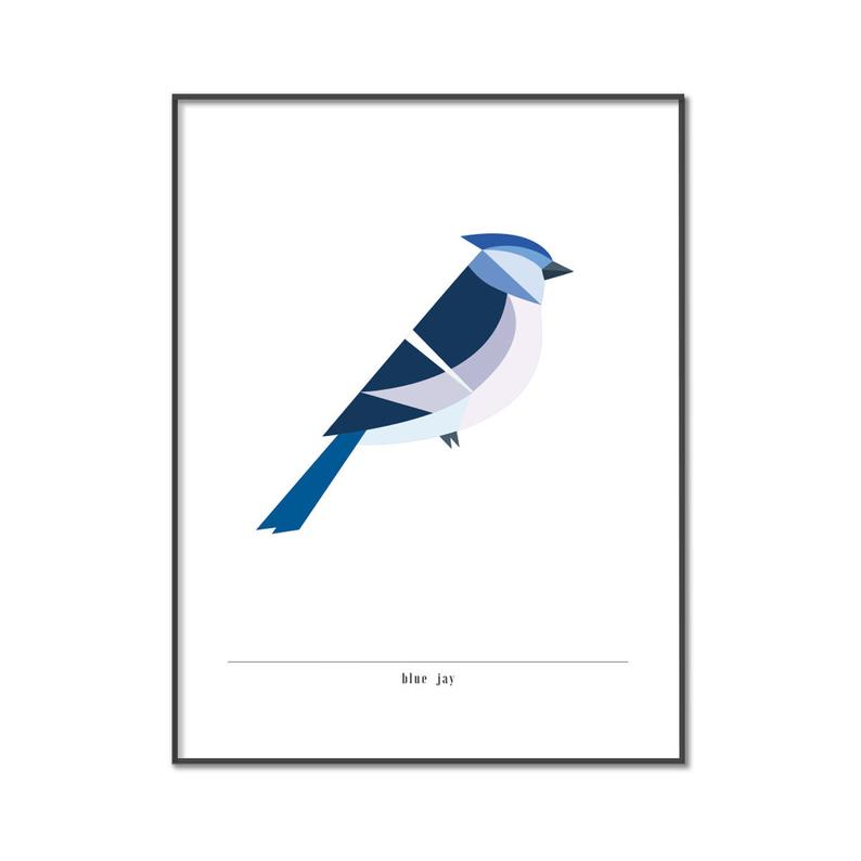 794x794 blue jay poster printable drawing for poster and print etsy