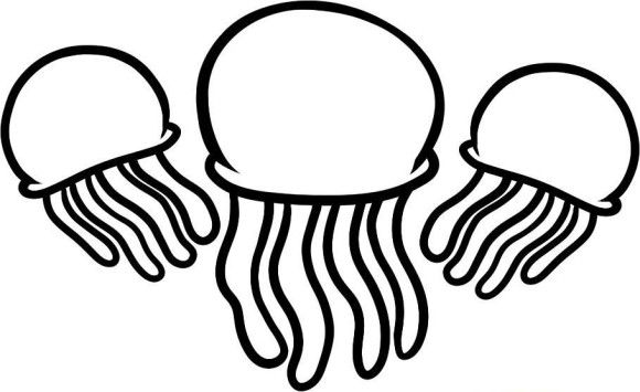 580x355 Easy Coloring Pictures Jelly Fish