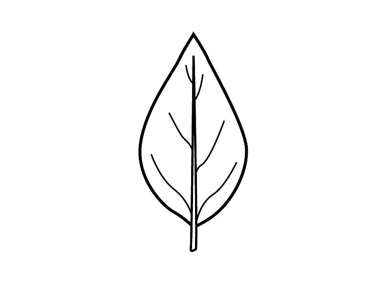 It is an image of Leaf Template Printable Free for dinosaur