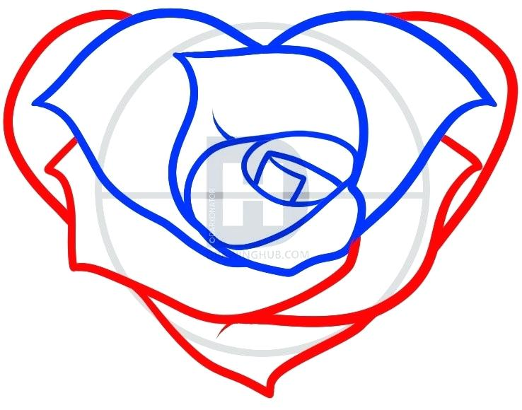 738x580 roses and heart drawings broken heart heart rose rose and heart