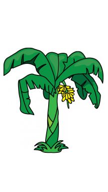 215x382 how to draw a banana tree unsorted goodies! drawings, tree