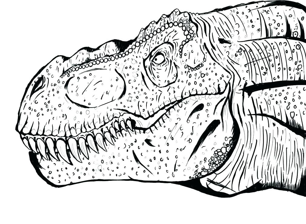 1011x741 Jurassic World Lego Coloring Pages