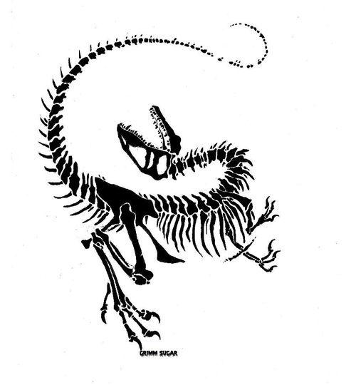 500x540 velociraptor skull tattoo