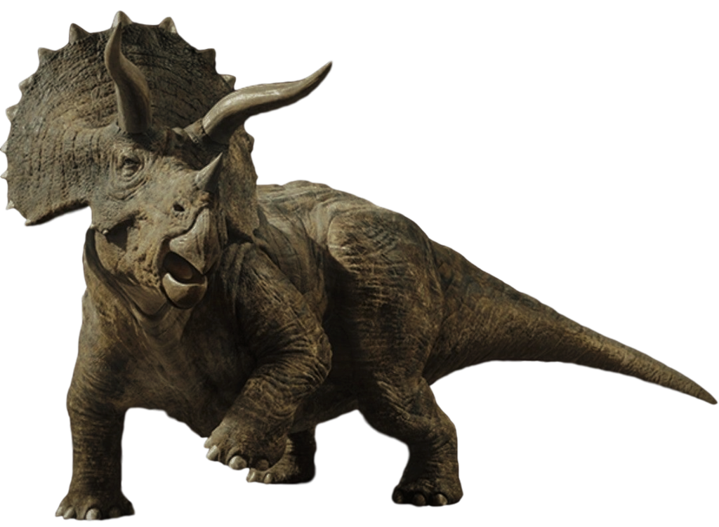 1024x751 Collection Of Free Triceratops Drawing Jurassic World Download